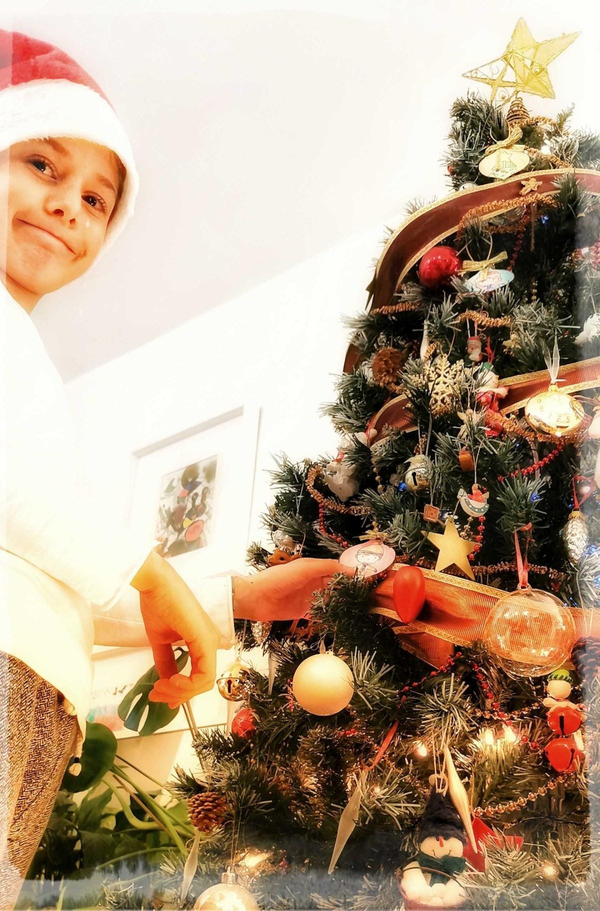 Faboola per il vostro albero di Natale!